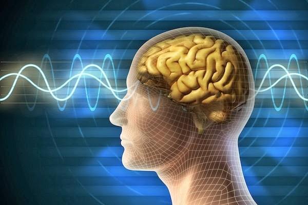 impactos cerebrais