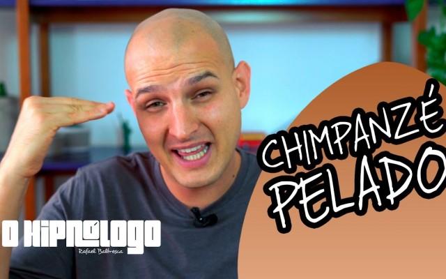 chimpanze pelado
